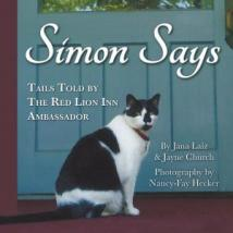 simon-says